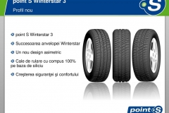 Wintersta3-03 (Copy)